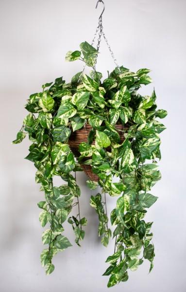 Pflanzampel Gr.L mit Photosranke 70cm / 110cm DA Kunstpflanzen Hängeampel Blumenampel künstliche