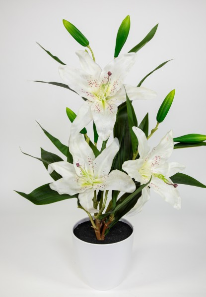 Lilie Koh Samui 60x40cm weiß im weißen Dekotopf GA Kunstblumen künstliche Lilienpflanze Blumen