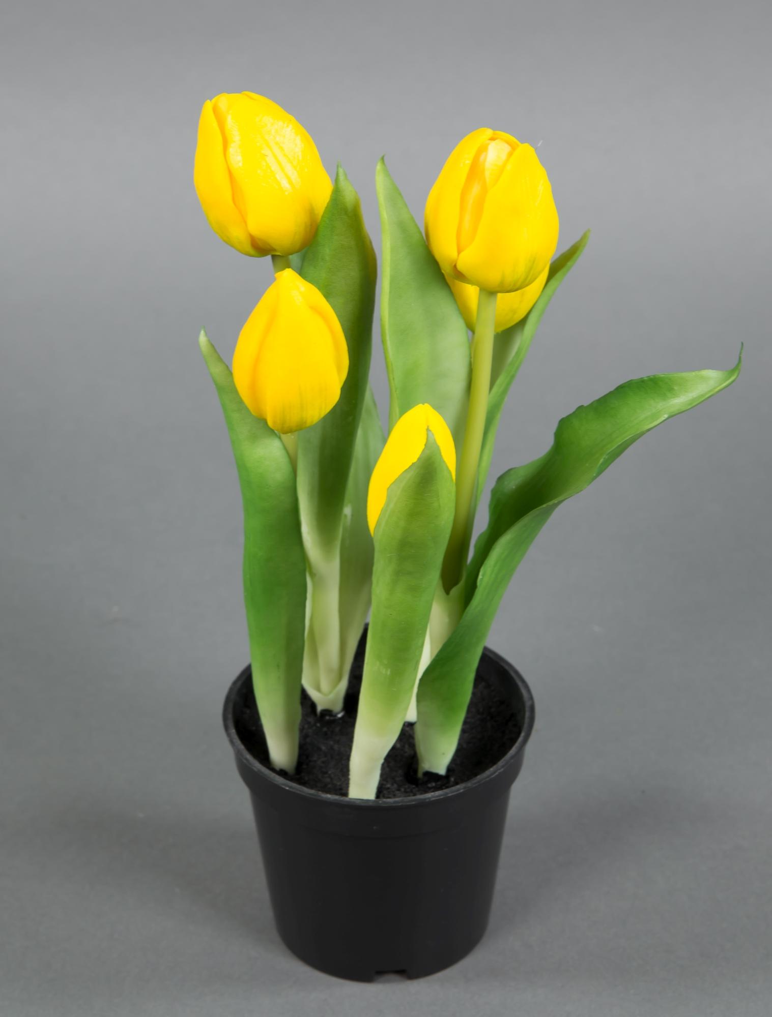 tulpen real touch 25cm gelb im topf ga kunstpflanzen k nstliche pflanzen tulpentopf fr hling. Black Bedroom Furniture Sets. Home Design Ideas