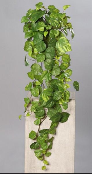Photosranke Real Touch 100cm DP Kunstpflanzen künstliche Pflanzen Ranken Photosbusch Photos