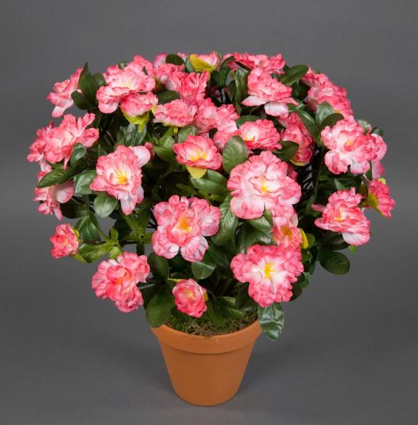 Große Azalee 36cm pink-weiß im Topf LA künstliche Blumen Azaleen Kunstpflanzen Kunstblumen