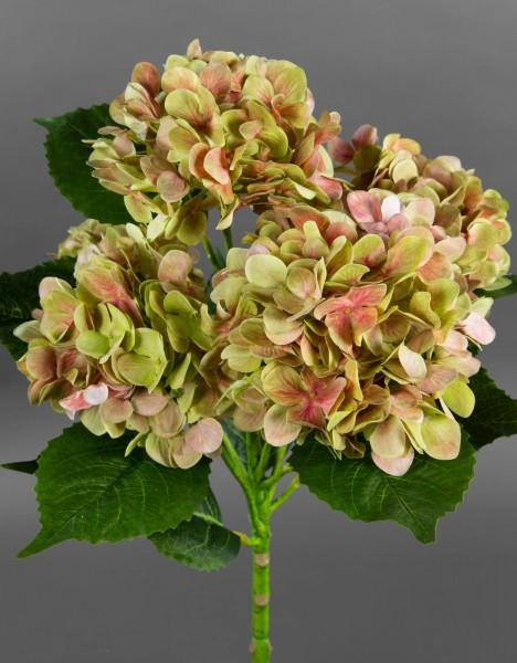 Hortensienbusch Nature 62cm grün-rosa GA Kunstpflanzen Kunstblumen künstliche Hortensie Pflanze