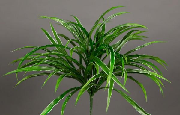 Dracenabusch 32cm grün-weiß -ohne Topf- YF Kunstpflanzen Grasbusch künstliches Gras Dekogras