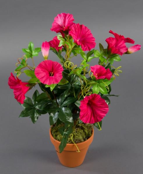 Petunienbusch 40cm pink im Topf ZF künstliche Pflanzen künstliche Petunie Kunstblumen Kunstpflanzen