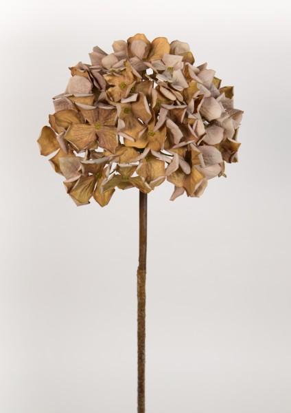 Hortensie Nature 62cm braun-creme CG Kunstlbumen künstliche Blumen Hortensien