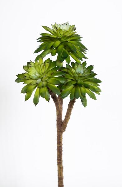 Sukkulente Sempervivum / Hauswurz mit 3 Köpfen 25x10cm grün DP Kunstpflanzen künstliche Pflanzen