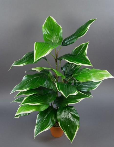 Hosta-Pflanze 70cm im Topf PF Kunstpflanzen künstliche Pflanzen