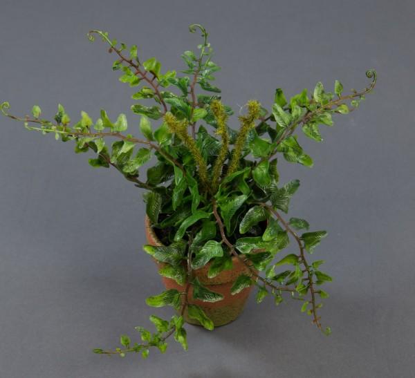 Mini-Farnbusch 18x20cm im Dekotopf GA Kunstpflanzen künstlicher Farn Farnbusch Kunstfarn