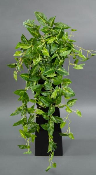 Syngonium-Ranke Real Touch 65cm grün-gelb ZF Kunstpflanzen künstliche Pflanzen Syngoniumbusch