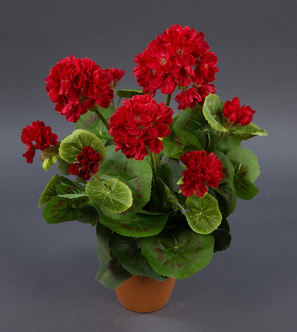 geranie 36cm rot ohne topf lm kunstpflanzen k nstliche. Black Bedroom Furniture Sets. Home Design Ideas
