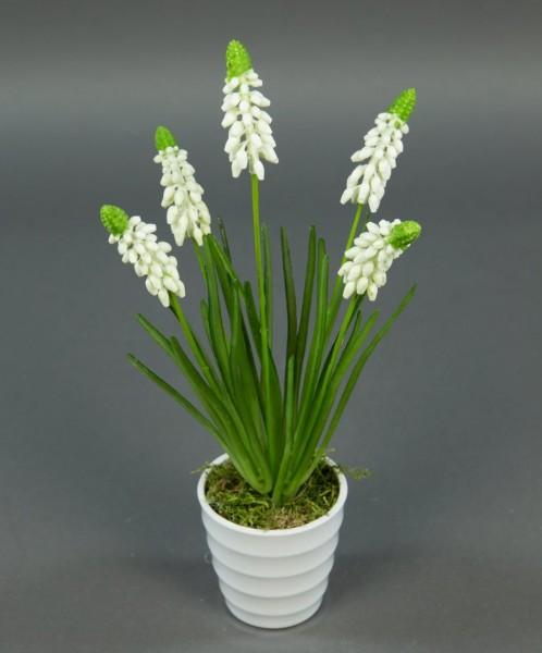 Traubenhyazinthe 28cm weiß im weißen Dekotopf PF Kunstpflanzen künstliche Hyazinthe Blume Kunstblume