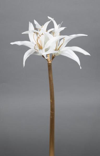 Amaryllis Goldstiel 52cm weiß GA Kunstblumen künstliche Blumen Amarylliszweig