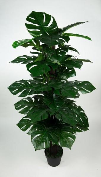 Splitphilo am Kokosstamm Real T.140cm ZJ künstlicher Baum Kunstbaum Kunstpflanze künstliche Pflanzen