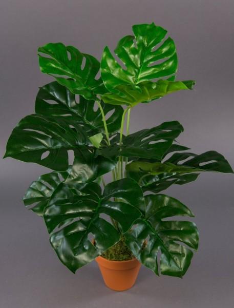Splitphilo Real Touch 50cm grün im Topf ZJ Kunstpflanzen künstliche Pflanzen Splitphilopflanze