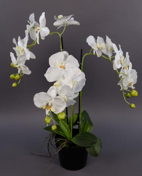 Orchidee 60x40cm weiß GA Kunstpflanzen künstliche Blumen Orchideen Kunstblumen