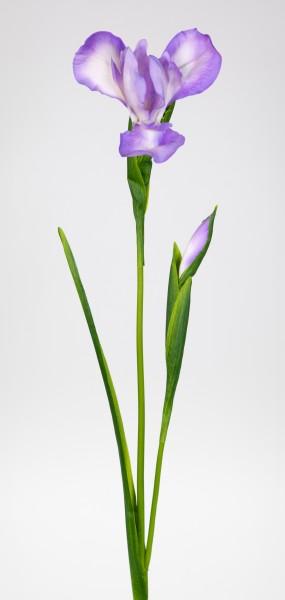 Schwertlilie / Iris 76cm lila CG Kunstblumen Dekoblumen künstliche Blumen Seidenblumen