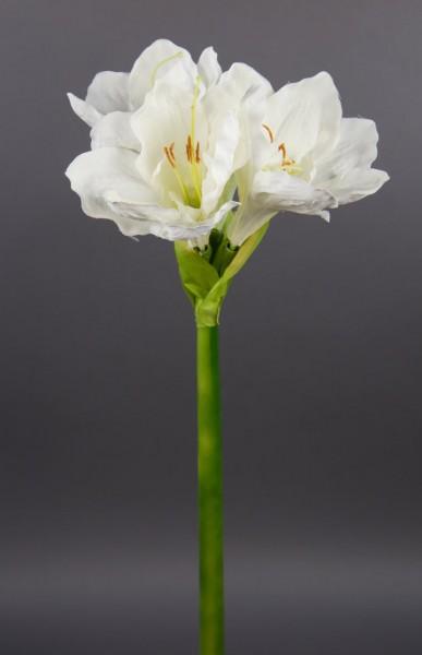 Große Amaryllis 65cm weiß-creme GA Seidenblumen Kunstblumen künstliche Blumen Ritterstern