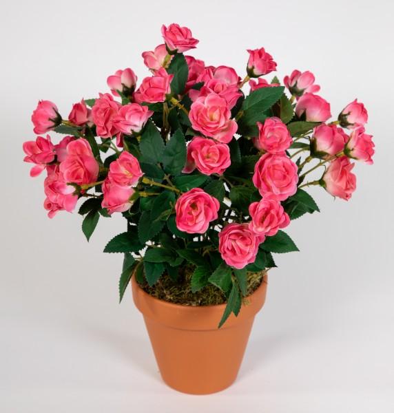 Rosenbusch 30cm rosa-pink im Topf ZF Kunstpflanzen Kunstblumen künstliche Blumen Rosenstrauch Rosen
