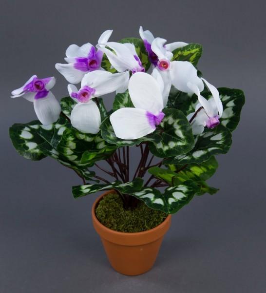Alpenveilchen 36cm weiß-lila im Topf ZF künstliche Blumen Kunstpflanzen Kunstblumen