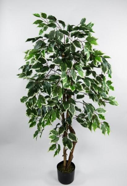 Ficus Excotica 120cm grün-creme DA Kunstbaum Dekobaum Kunstpflanzen künstlicher Baum Birkenfeige