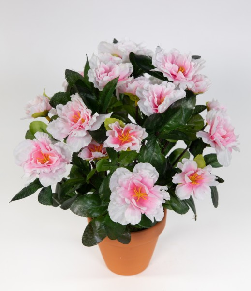 Azalee 24cm pink-weiß im Topf LA künstliche Blumen Pflanzen Kunstpflanzen Kunstblumen