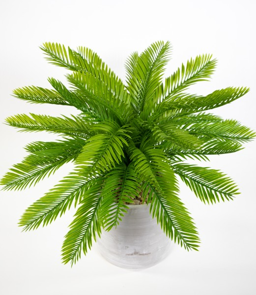 Cycaspalme 60cm im Dekotopf GA Kunstpflanzen Kunstpalmen künstliche Pflanzen Palme Cycasfarn