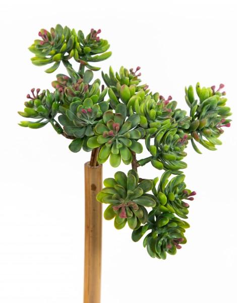 Sukkulente Sedum 18x14x11cm grün-rot FT Kunstpflanzen künstliche Pflanzen