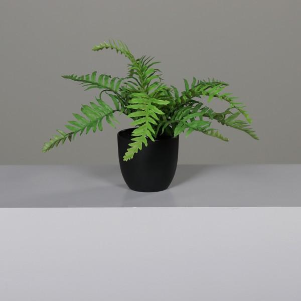 Farnbusch 30x25cm im schwarzen Dekotopf DP Kunstpflanzen Kunstfarn künstlicher Farn Pflanzen