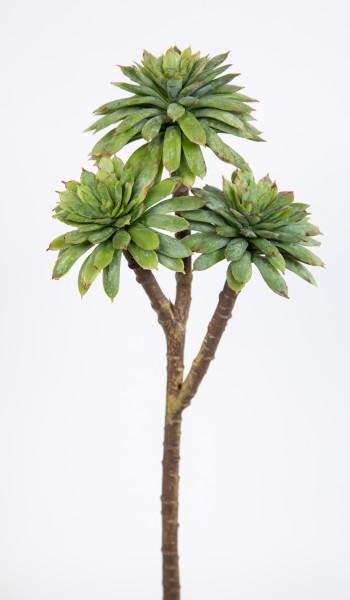 Sukkulente Sempervivum / Hauswurz mit 3 Köpfen 25x10cm grün-grau DP Kunstpflanzen künstliche Pflanze