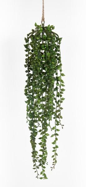 Senecio-Hänger 55cm / 90cm GA Kunstpflanzen künstliche Pflanzen Kreuzkraut Greiskraut