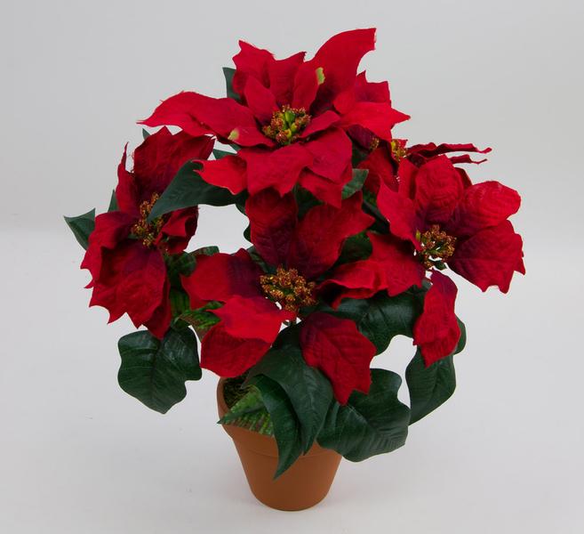 weihnachtsstern im topf 36cm rot pf k nstlicher weihnachtsstern poinsettie kunstblumen. Black Bedroom Furniture Sets. Home Design Ideas