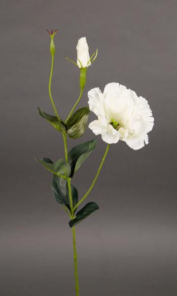 Lisianthus 60cm weiß CG Kunstblumen künstliches Eustoma Lysianthus Blumen
