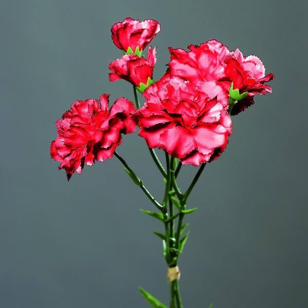 Nelkenbund mit 3 Stielen 30cm rot DP Kunstblumen künstliche Blumen Nelken