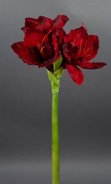 Große Amaryllis 65cm dunkelrot GA Seidenblumen Kunstblumen künstliche Blumen Ritterstern