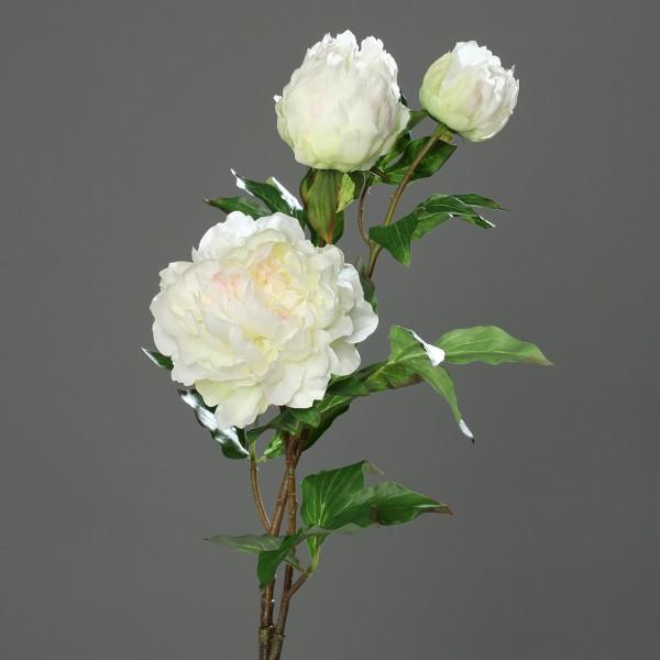 Große Pfingstrose mit 3 Blüten 82cm weiß-creme DP Kunstblumen Seidenblumen künstliche Blumen Päonie