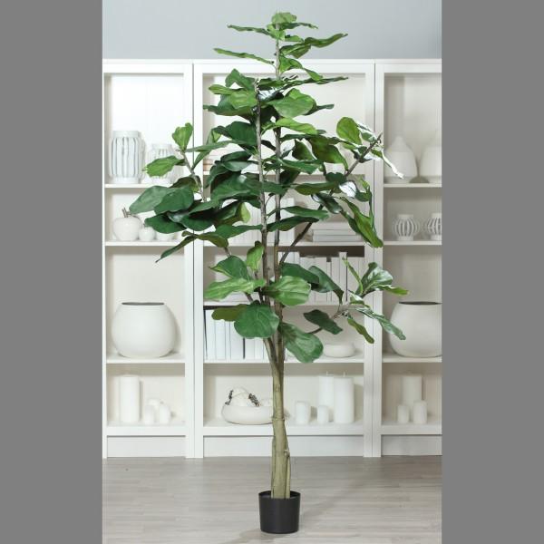 Geigenfeige 220cm DP Kunstbaum Kunstpflanzen künstlicher Baum Ficus Lykra künstliche Feige