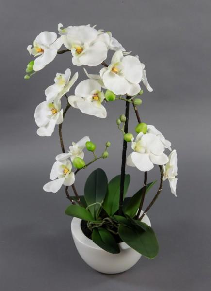 Orchidee Real Touch 58x28cm weiß in weißer Keramikschale GA Kunstblumen künstliche Blumen