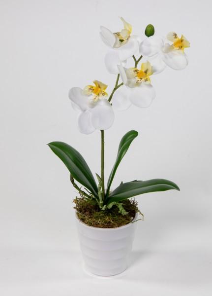Orchidee Real Touch 28cm weiß im weißen Dekotopf DP künstliche Blumen Orchideen Kunstpflanzen