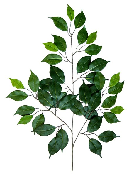 12 Stück Ficuszweig 60cm grün mit 42 Blättern DA künstlicher Zweig