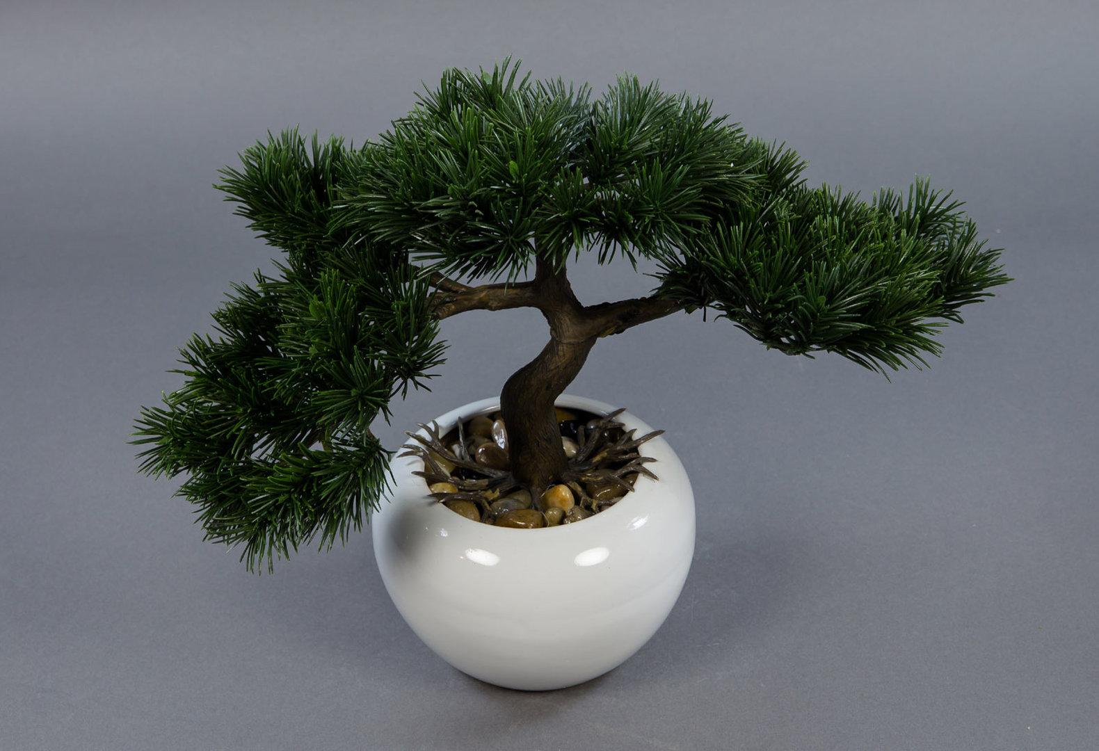 ehrf rchtige japanische pflanzen einzigartige ideen zum sichtschutz. Black Bedroom Furniture Sets. Home Design Ideas