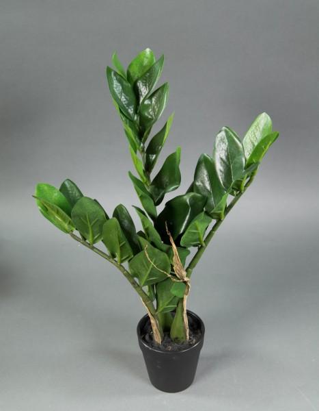 Zamioculcas Zamiifolia / Glücksfeder 45cm GA Kunstpflanzen künstliche Pflazen Zamii