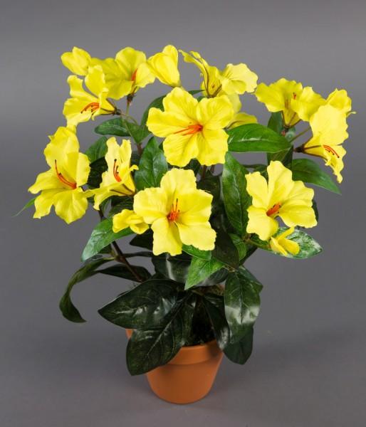 Hibiskus 40cm gelb im Topf ZF künstliche Pflanzen künstlicher Eibisch Kunstblumen Kunstpflanzen