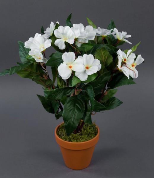 Impatiens / Fleißiges Lieschen 38cm weiß im Topf LM künstliche Blumen Kunstpflanzen Kunstblumen