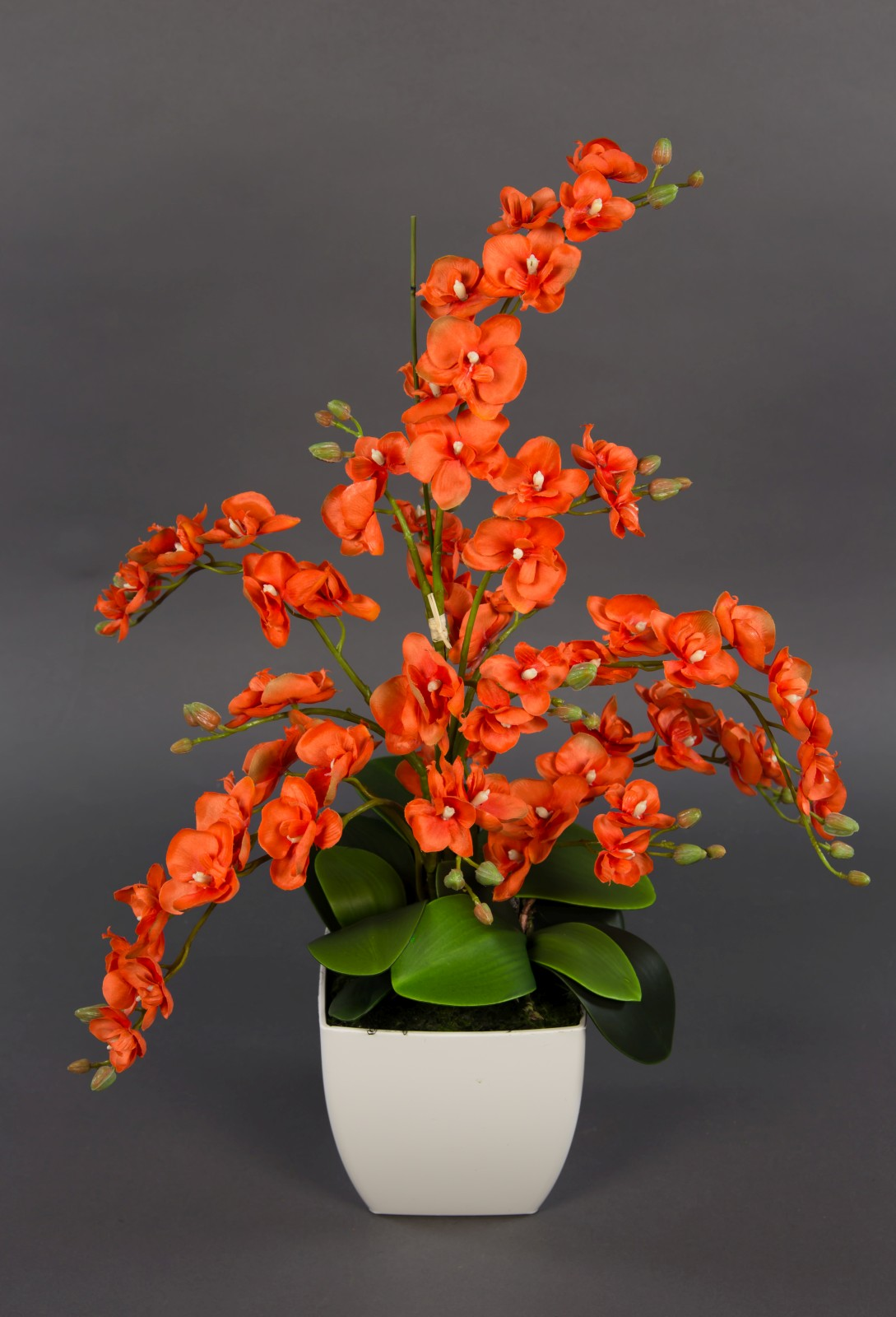 Orchideen arrangement orange im wei en dekotopf pm kunstblume k nstliche orchidee kunstpflanze - Orchideen arrangement ...