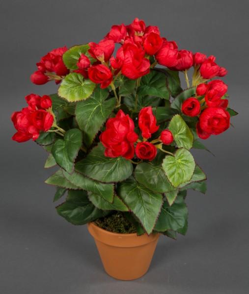 Begonie 38cm rot im Topf LM Kunstpflanzen künstlicher Begonienbusch künstliche Pflanze Kunstblumen
