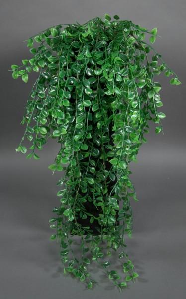 Buchsblattranke 85cm PM Farn Ranken künstliche Pflanzen Kunstrpflanzen künstlicher Buchs
