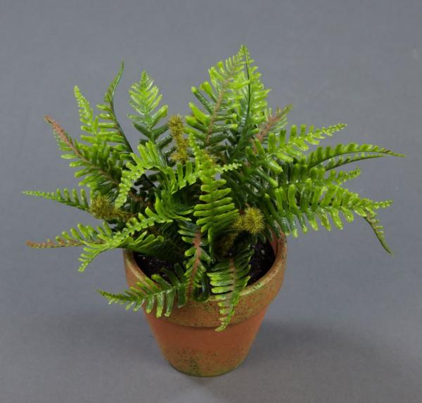 Mini-Farnbusch 15x18cm im Dekotopf GA Kunstpflanzen künstlicher Farn Farnbusch Kunstfarn