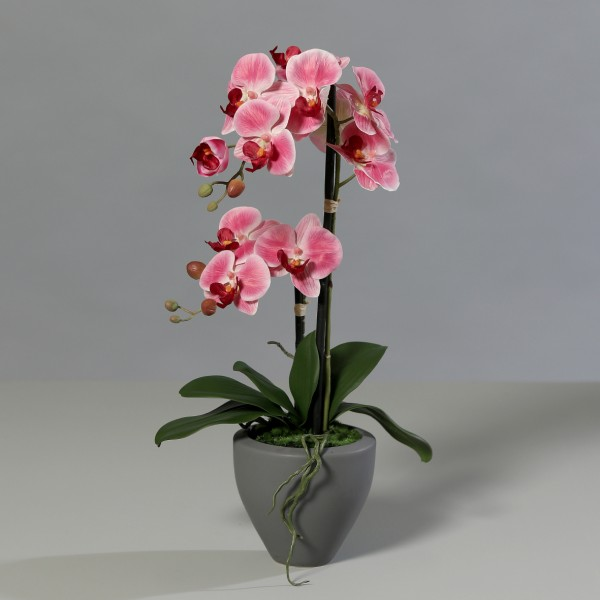 Orchidee Real Touch 62cm rosa-pink im grauen Keramiktopf DP Kunstblumen künstliche Blumen