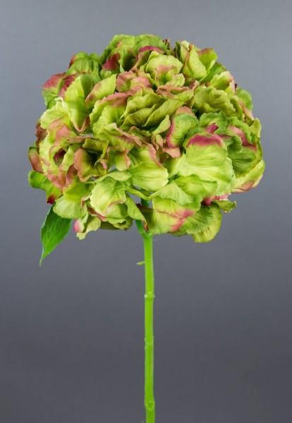 Hortensie Natura 40cm grün AD Kunstblumen künstliche Hortensie Blumen Seidenblumen