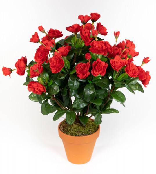 Azalee 40cm rot im Topf ZF Kunstpflanzen Kunstblumen künstliche Blumen